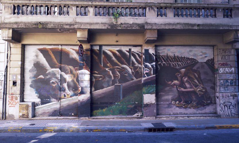 Aus Spinnerei wird ernst: Auto in Uruguay gekauft…. - Gallery Slide #6
